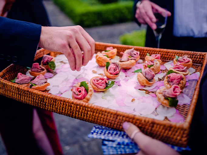 Canape Parties